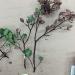 Arcto glandulosa