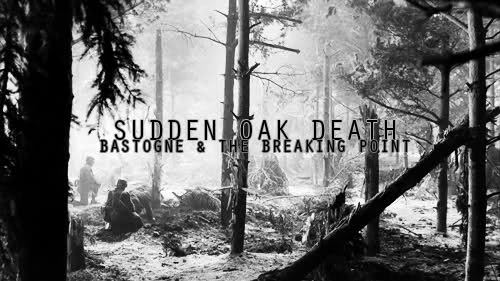 Sudden Oak Death: 'Bastogne' and 'The Breaking Point'