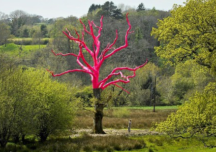 The Pink Tree