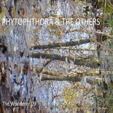 Phytophthora & The Others album cover