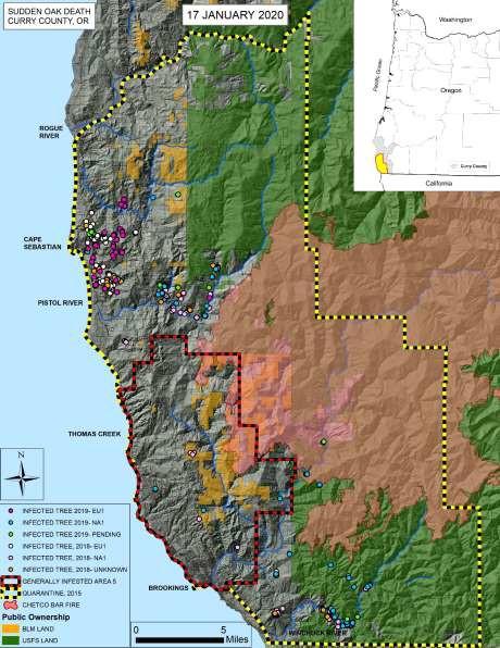 Map of current status of P. ramorum in Oregon wildlands