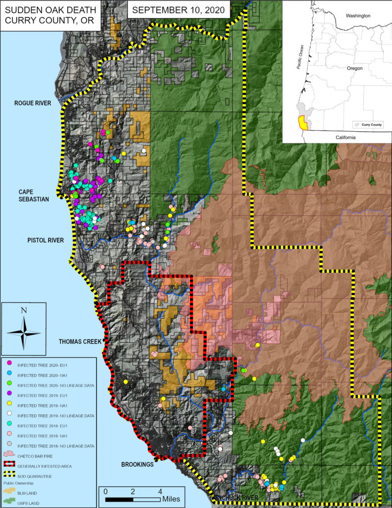 Map of P. ramorum detections and quarantine zones in Oregon