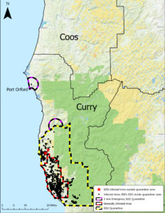 Map showing locations of recent P. ramorum detections in Oregon and emergency SOD quarantine areas